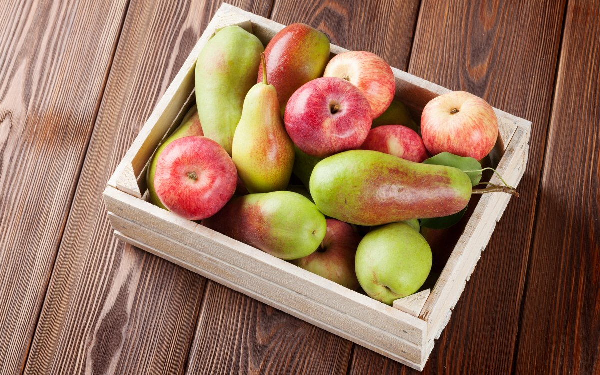 Брага из груш и яблок