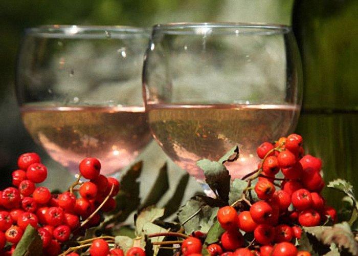 Рецепты домашнего вина из рябины